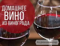 Домашні Вино (висока якість ) червоне напів-сухе