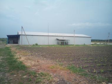 Овощехранилище в аренду