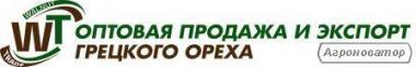 Оптовий продаж та експорт волоського горіха