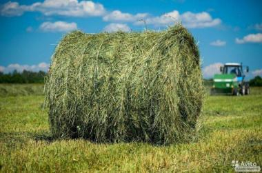 Продается сено/солома в рулонах