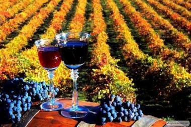 Молдавский Алкоголь – продажа только ОПТОМ