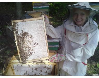 Продам мед з липи.