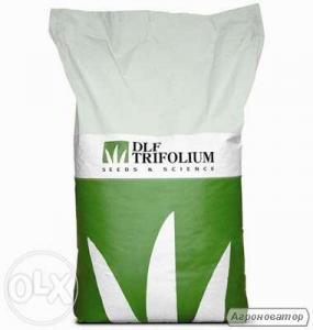 Семена газонной травы DLF Trifolium