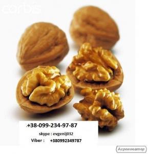 Принимаем заказы на урожай грецкого ореха 2017 г