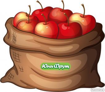 Покупаем яблоки на переработку от 20 т