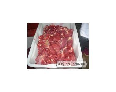 Продажа туши, полутуши говяжьи бык, корова охлажденные (субпродукцію).