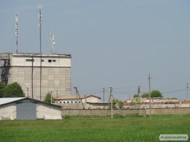 Продаж фермерського комплексу для виробництва свиней, розведення ВРХ