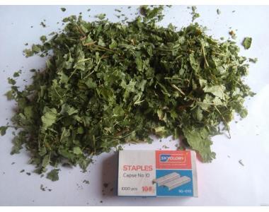 Продам лікарські рослини