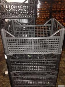 Ящик пластиковый полипропиленовый (цитрусовый ящик)