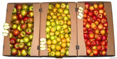 Яблочный лоток