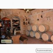 Продам виноград Мерло винний сорт