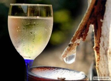 Березовое вино / Вино из березового сока