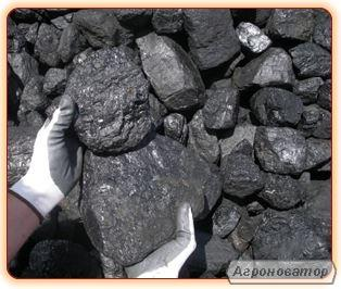 Вугілля кам'яне