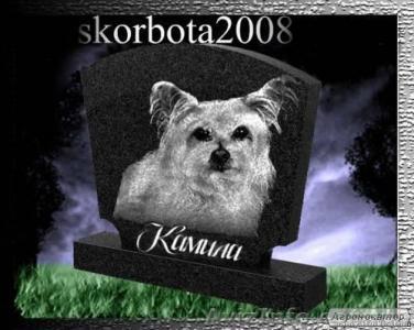 Эвтаназия (усыпление) животных (093)408-09-36