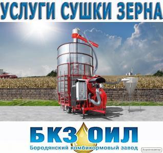 Сушка зерна, очищення зерна і зберігання. Елеватор