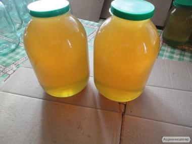 Продам мед, с эко-пасеки!
