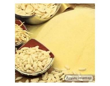 Мука из твердых сортов пшеницы дурум для производства макарон