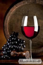 Продам сухое красное домашнее вино