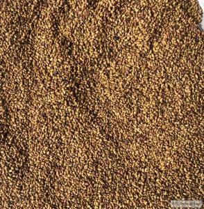 Продам семена люцерны устойчивая к раундапу.