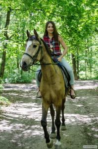 Продам коня мерена в Харкові