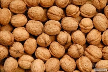 Продам грецкий орех урожая 2018г- 10т,