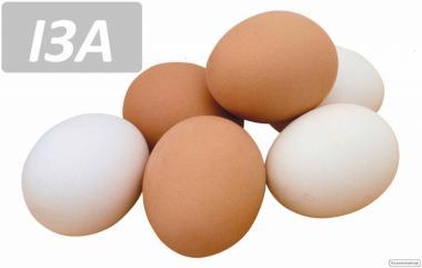 Отборное столовое яйцо