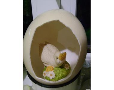 Скарлупа від страусиного яйця для сувенірів