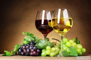 Натуральные домашние бессарабские вина