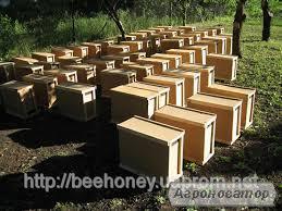 Мукачівський бджолорозплiдник реалізує бджолопакети i бджоломатки.