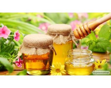 Мед из лесного разнотравья