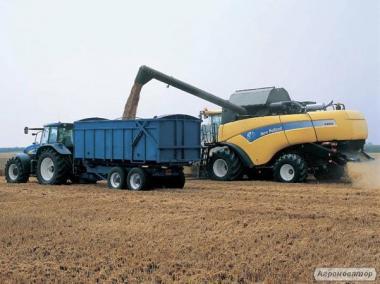 Збирання врожаю зернових бобових і олійних культур