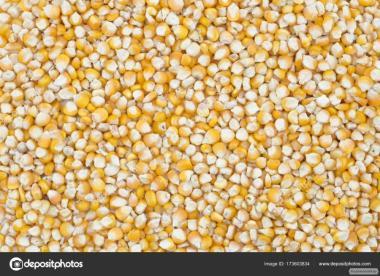 Продаж великим оптом кукурудзи.