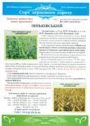 озимая пшеница озима пшениця