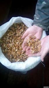 Продам  грецкий орех и тыквенную семечку.
