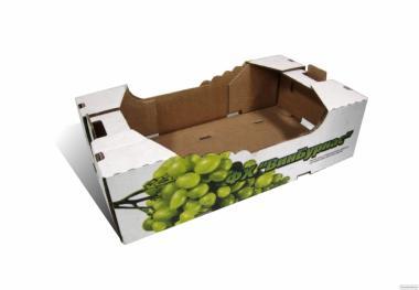 Лоток для овочів і фруктів