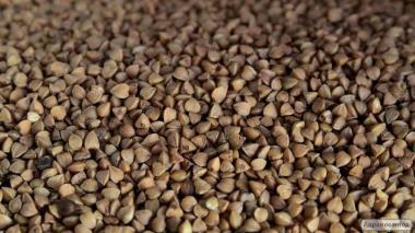 продам насіння вівса,сої,люцерни,вики