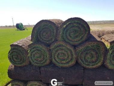 Рулонный газон, укладка с гарантией