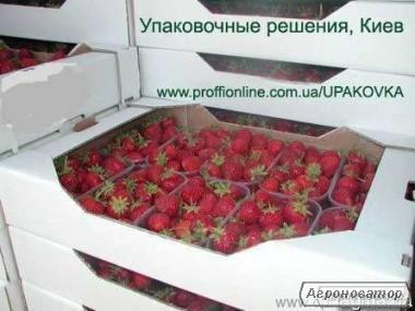 Упаковка  для  расфасовки ягод, фруктов, овощей, орехов, зелени