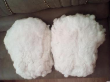 Продам білі шкурки кролика