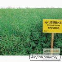 Семена озимого рапса гибрид ЛЕМБКЕ Трумпф
