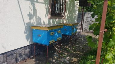 Продам ульи и пчелы