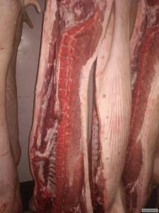 Реалізую свинину
