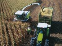 Уборка и обработка урожая
