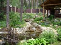 Озеленение и ландшафтные услуги